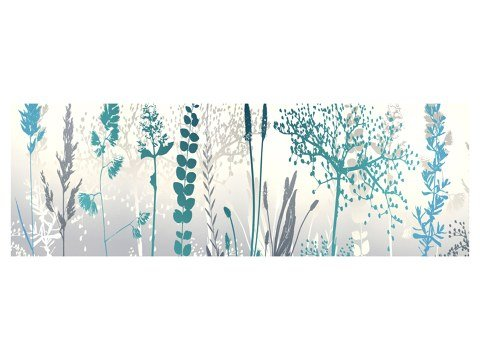 Photos de fleurs multicolores