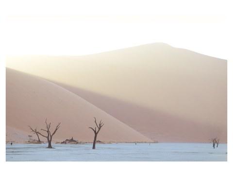 Dune au coucher de soleil