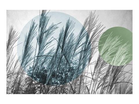 Pop art herbe