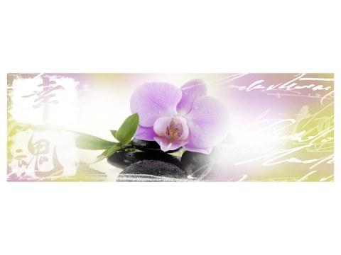 Panorama d'orchidée