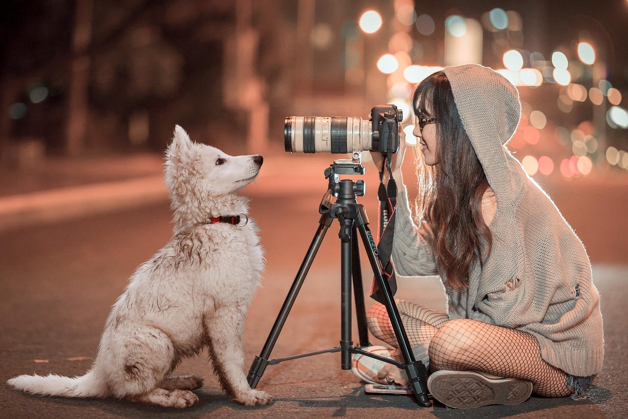 Astuces pour photo d'animaux domestiques